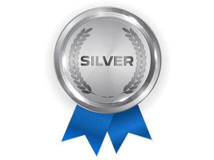 Silver-428x321.jpg